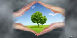 کرونا با تمام بی مهریش به بشر با زمین مهربان است / شعارهای زیبای حفاظت از محیط زیست را عملیاتی کنید