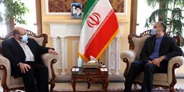 دستیار ویژه رئیس مجلس با رئیس دفتر جنبش حماس در تهران دیدار کرد
