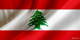 وحدت و مقاومت راه رهایی ملت مظلوم فلسطین است/ نقش موثر روابط پارلمانی کشورهای مسلمان در افشای جنایات بشری صهیونیست ها