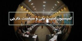 کمیسیون امنیت ملی ۴ لایحه دولت را بررسی کرد